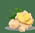 ingredient-ginger