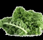 ingredient-kale