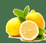 ingredient-lemon