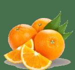 ingredient-oranges