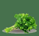 ingredient-parsley