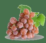 ingredient-red-grape